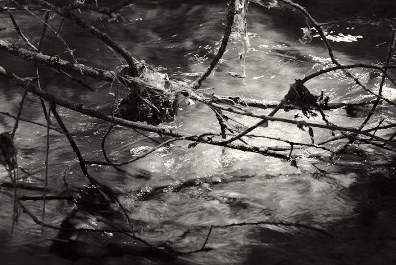 655 nido del rio