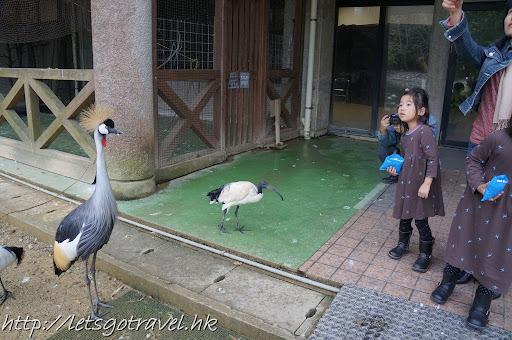 20111229okinawa293.JPG