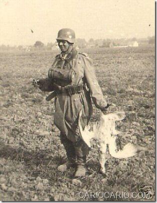 Fotos engraçadas da Segunda Guerra Mundial (19)