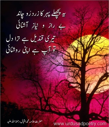 Allama Iqbal Inspirational