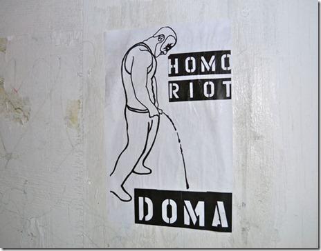 homo riot4