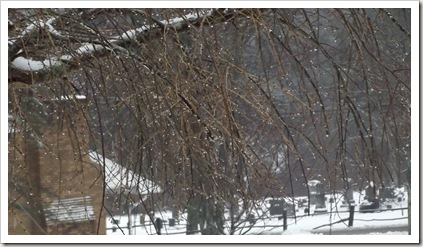 winter mix 1.13 004