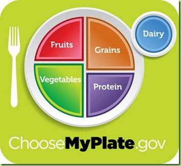 gerard's food plate