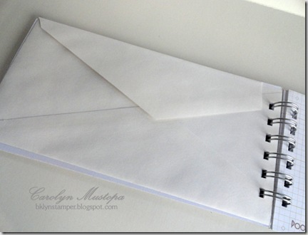 cruisejournal-envelope