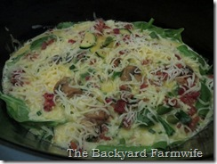 crock pot frittata - The Backyard Farmwife