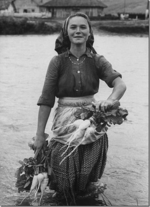 Girl farm worker washing turnips from river, on collective farm, Romania, 1973