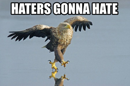 haters_gonna_hate_eagle-142651