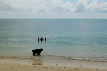 Key West_050
