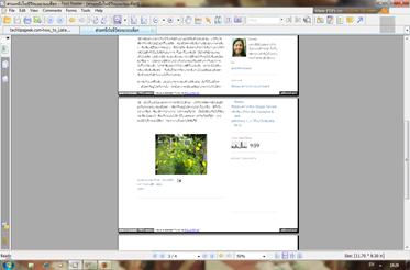 หน้าเวบเป็น pdf ไฟล์