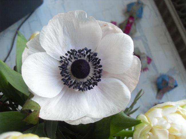 Blomster fra Emilie