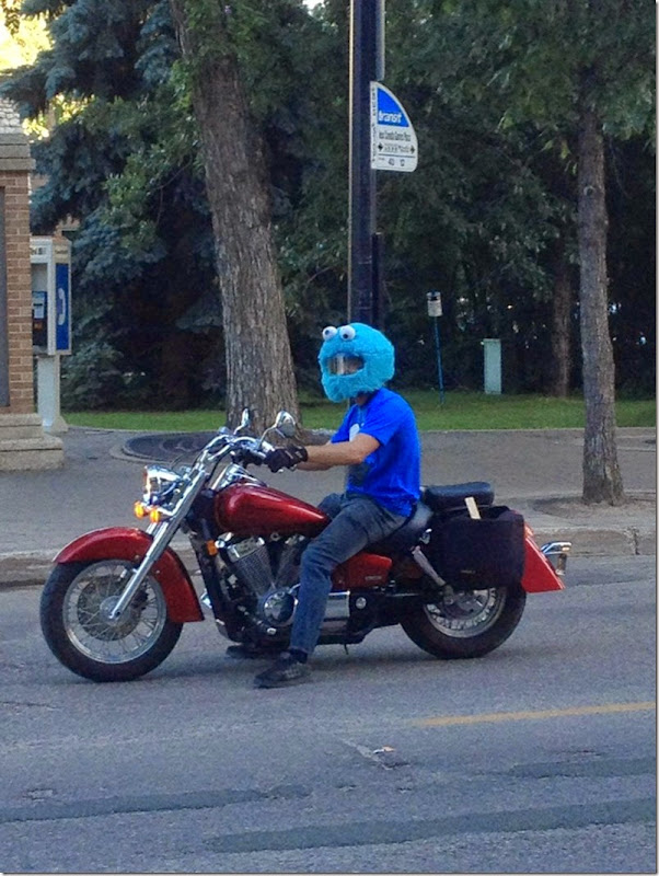 cookie-monster-helmet