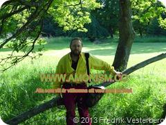 DSC07641 Djurgården trädstam picknick. Med amorism