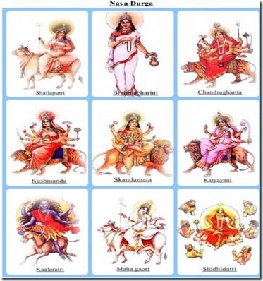 nava-durga-omshivashakti-wordpress