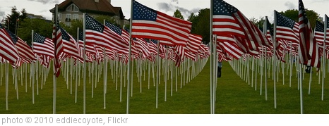 'Memorial Day Flags' photo (c) 2010, eddiecoyote - license: http://creativecommons.org/licenses/by/2.0/