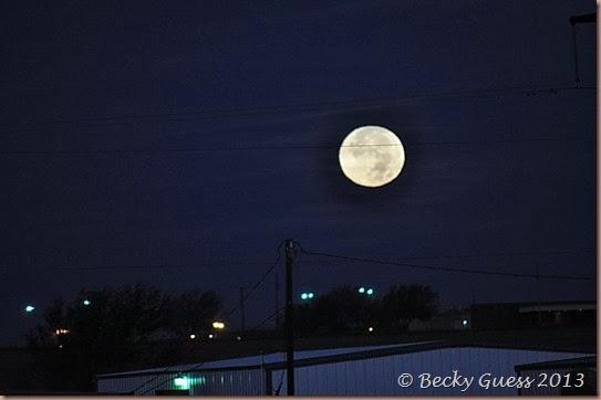11-17-13 moon 31