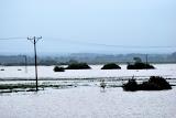 Powódź 2010 Siedliska