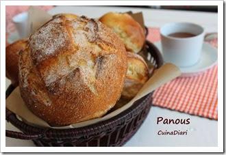 6-2-panous-ppal