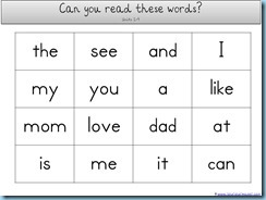 You Can Read Sight Words Word Count Assessment1