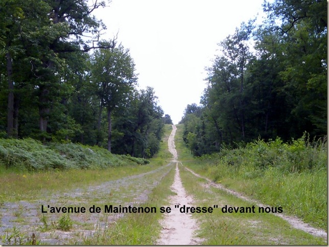 avenue de Maintenon-001