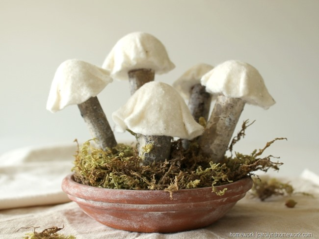 Felt & White Birch Mushrooms via homework (2)