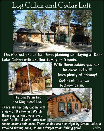 Cedar Loft