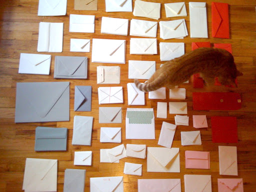 While making the guest book, the floor of my apartment was covered in envelopes as I organized them by color and shape. Here, Marmalade is helping me.