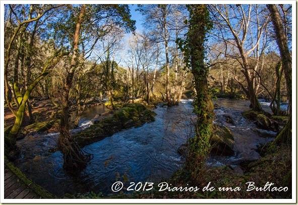 Refugio_Verdes-23