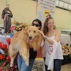 Festa de São Francisco de Assis - Boca do Rio