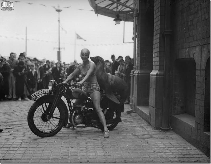1935 circus