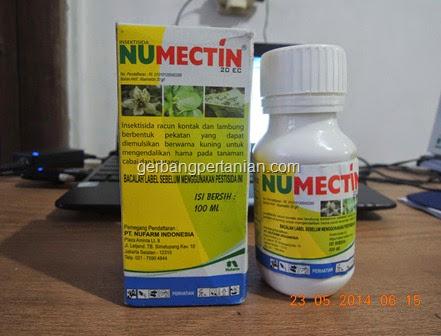 insektisida-pengendali-trips-tungau-bahan-aktif-abamektin-20EC