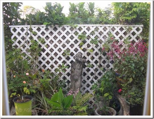 06-06-frnt-patio
