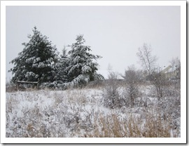 20120113_snow-day-outside_021