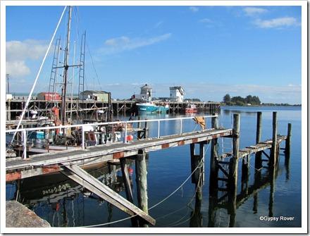 Westport fishing boat wharf.