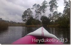 Pellicer Creek Kayaking 009
