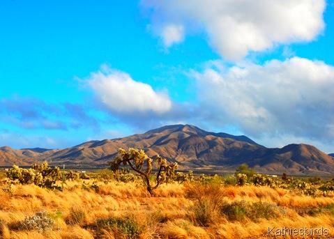 7. Mt. Fagan-kab