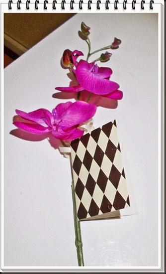 blomstre1