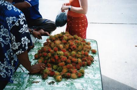 195. lichy Thailanda.jpg