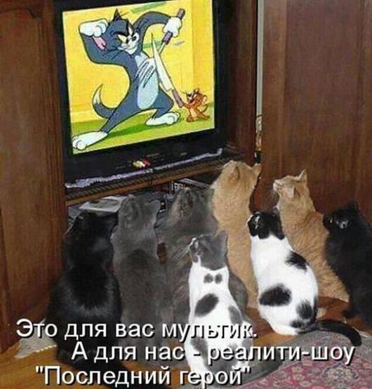 f0d9a504a3e2aaaf61ddb847fda_prev