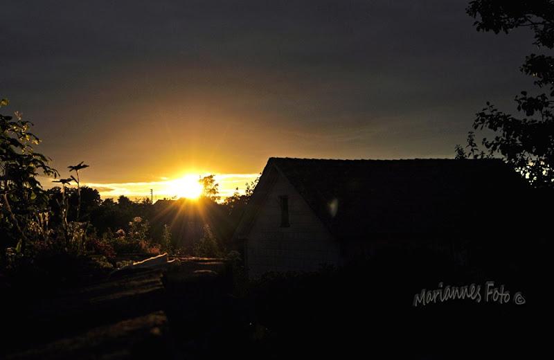 solnedgangvannmerke kopiera