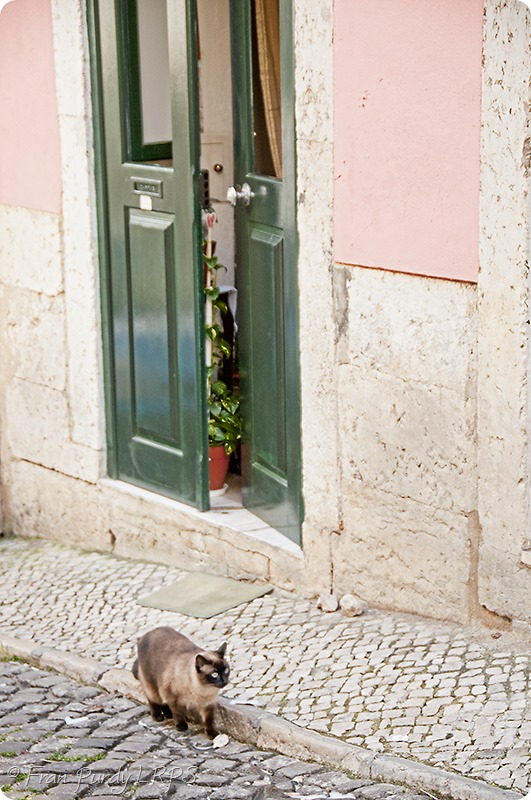 1304_lisbon_0970
