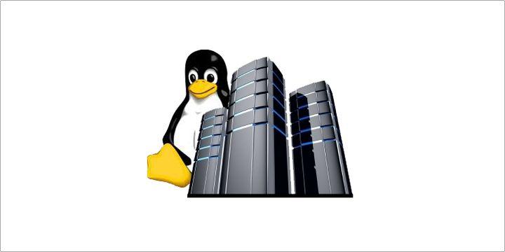 Linux nei Server
