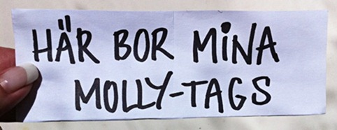 lapp fotoutmaning Molly-tags