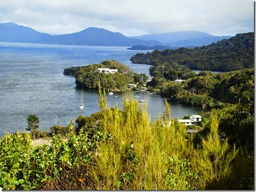 Stewart-Island11