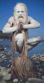 Sadhu nudo con capelli e barba mai tagliati in equilibrio (picc.)