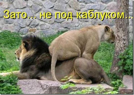 kotomatrix_00096