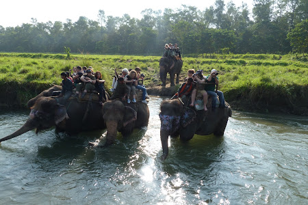 Imagini Chitwan: safari pe elefanti
