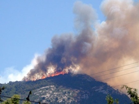 Υποβολή αιτήσεων για αποζημιώσεις από τις φωτιές του 2011 στην Κεφαλονιά