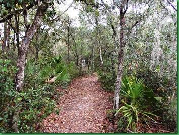 Pat's Island Trail 005