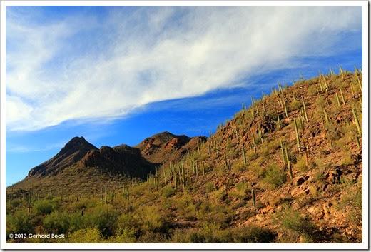 131202_TucsonMountainPark_001