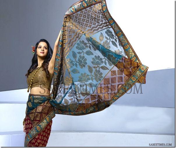 Bhavana_Designer_Saree(2)